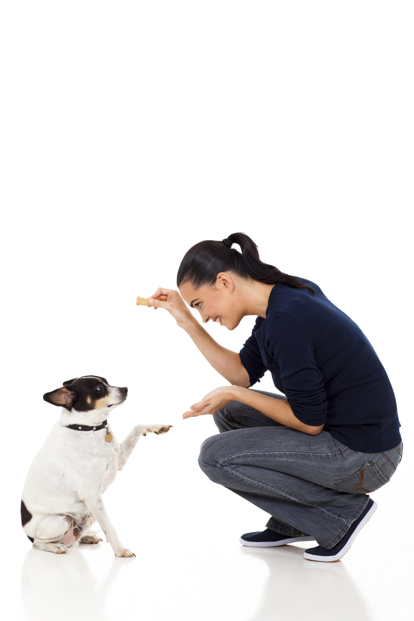 אימוץ כלב גזעי או מעורב